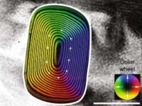 Ученые обнаружили в материале метеорита самую древнюю магнитную «запись»